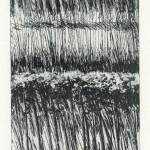 Berkeloever (ets, vernis-mou, 10x15 cm, 2009)