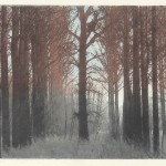 Goor van Hofman (fotopolymeer-ets, 24x18 cm, 2007)