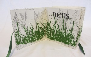 Gras (6)