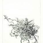 Plukje zeewier (droge naald ets, 12x18 cm, 2009)