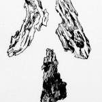 Schors (3) (droge naald ets, 12x18, 2009)