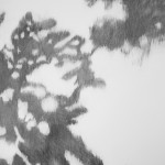 Shadowland (1) (houtskool op papier, 100x70 cm, 2013)