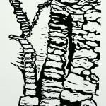 Staigue Fort (3) zwartwit k