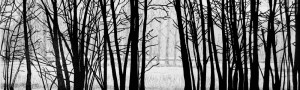 cropped-Winter-3.jpg